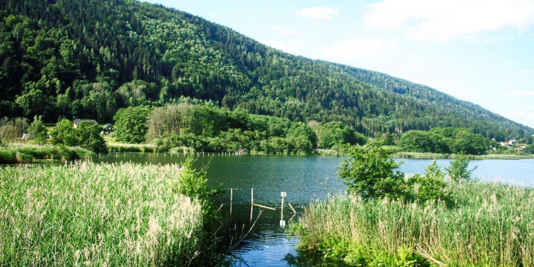 Ossiacher See. Foto: Birgit Frank