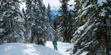 Lahngangkogel, Ski- & Schneeschuhtour