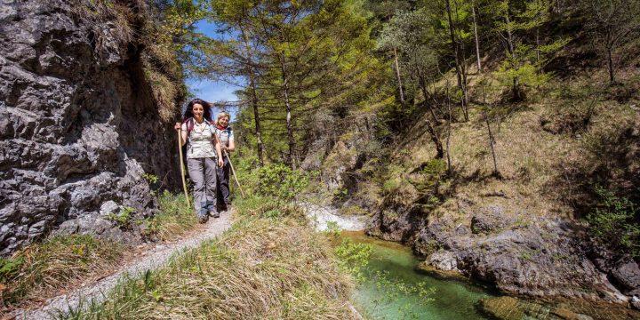 Tour im Naturpark Ötscher-Tormäuer