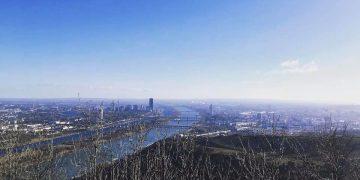 Meine Leopoldsberg-Lieblingsrunde mit Blick über Wien