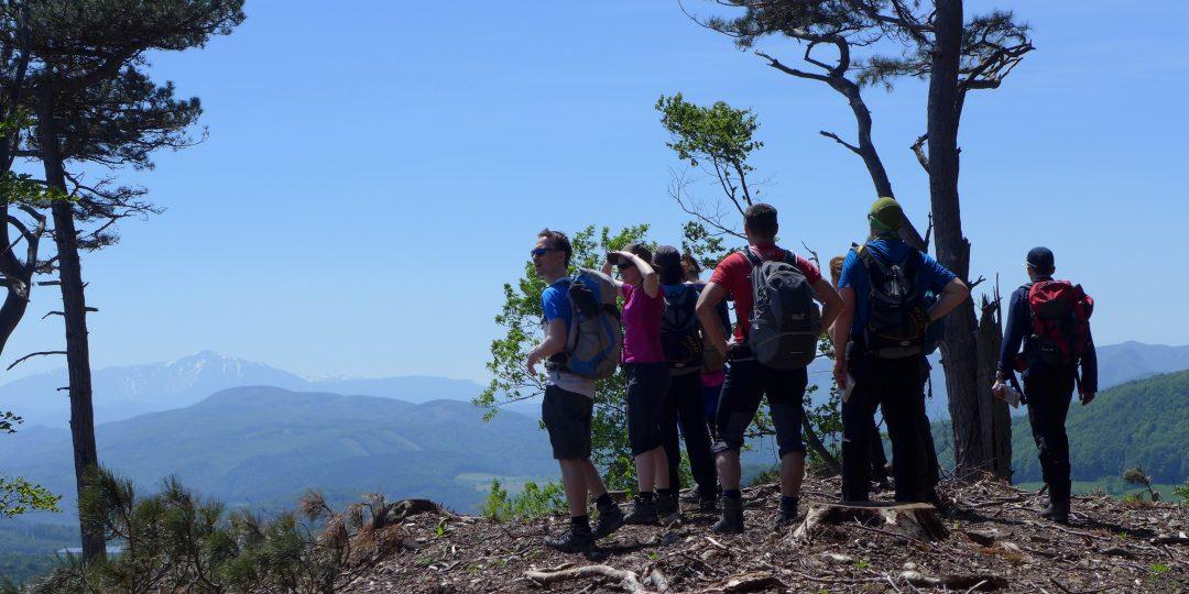 Unterwegs zum Lindkogel - Blick zum Schneeberg. Foto: Alpenverein Edelweiss