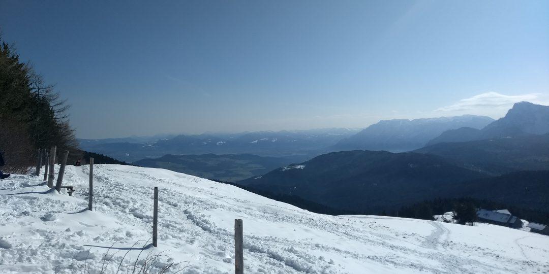 Gute Fernsicht im Gipfelbereich. Foto: Nikolaus Vogl