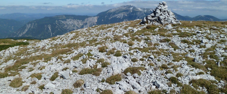 Auf der Scheibwaldhöhe, im Hintergrund der Schneeberg. Foto: Alpenverein Edelweiss
