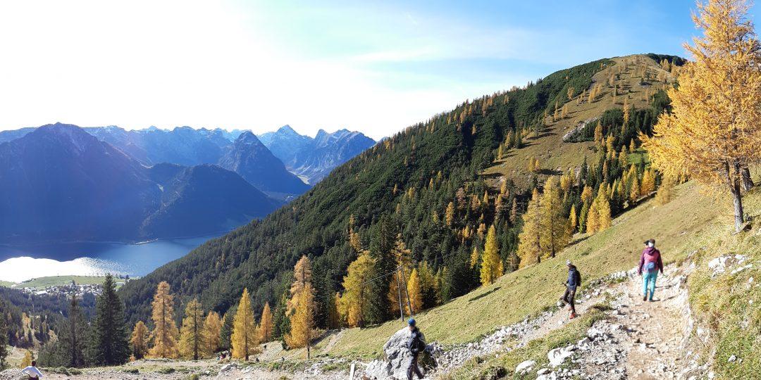 Beim Abstieg von der Dalfazalm: Blick ins Karwendel, auf den Achensee und rechts oben die Dalfazalm. Foto: Konrad Gwiggner