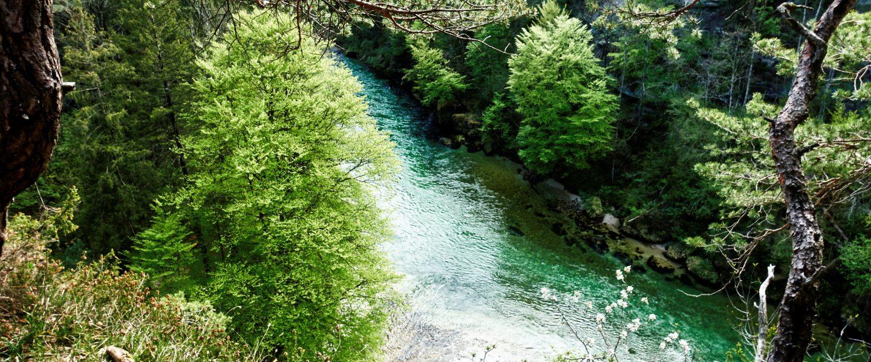 Fluss Steyr